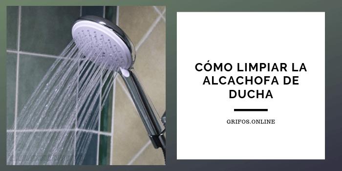 como-limpiar-alcachofa-ducha