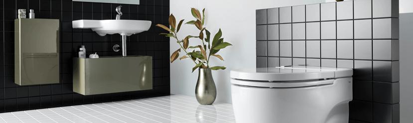 Cambiar el inodoro de su sala de baño